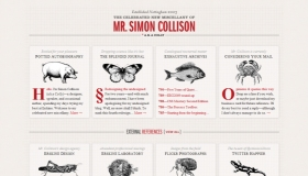 Simon Collison
